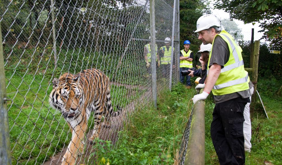 Head of Health Safety & Security at Zoological Society of London (ZSL)