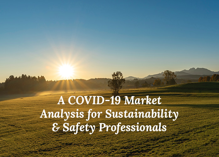 A COVID-19 Market Analysis For Sustainability & Safety Professionals