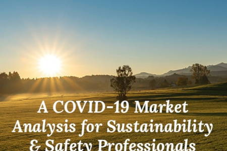 COVID-19 Market Analysis For Sustainability & Safety Professionals