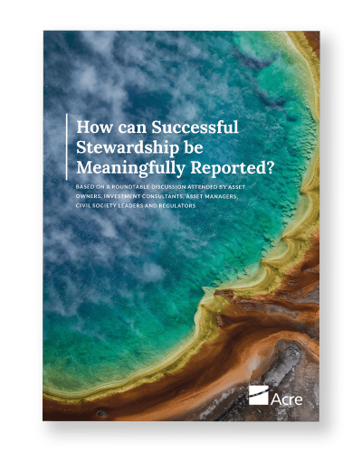 How can successful stewardship be meaningfully reported?